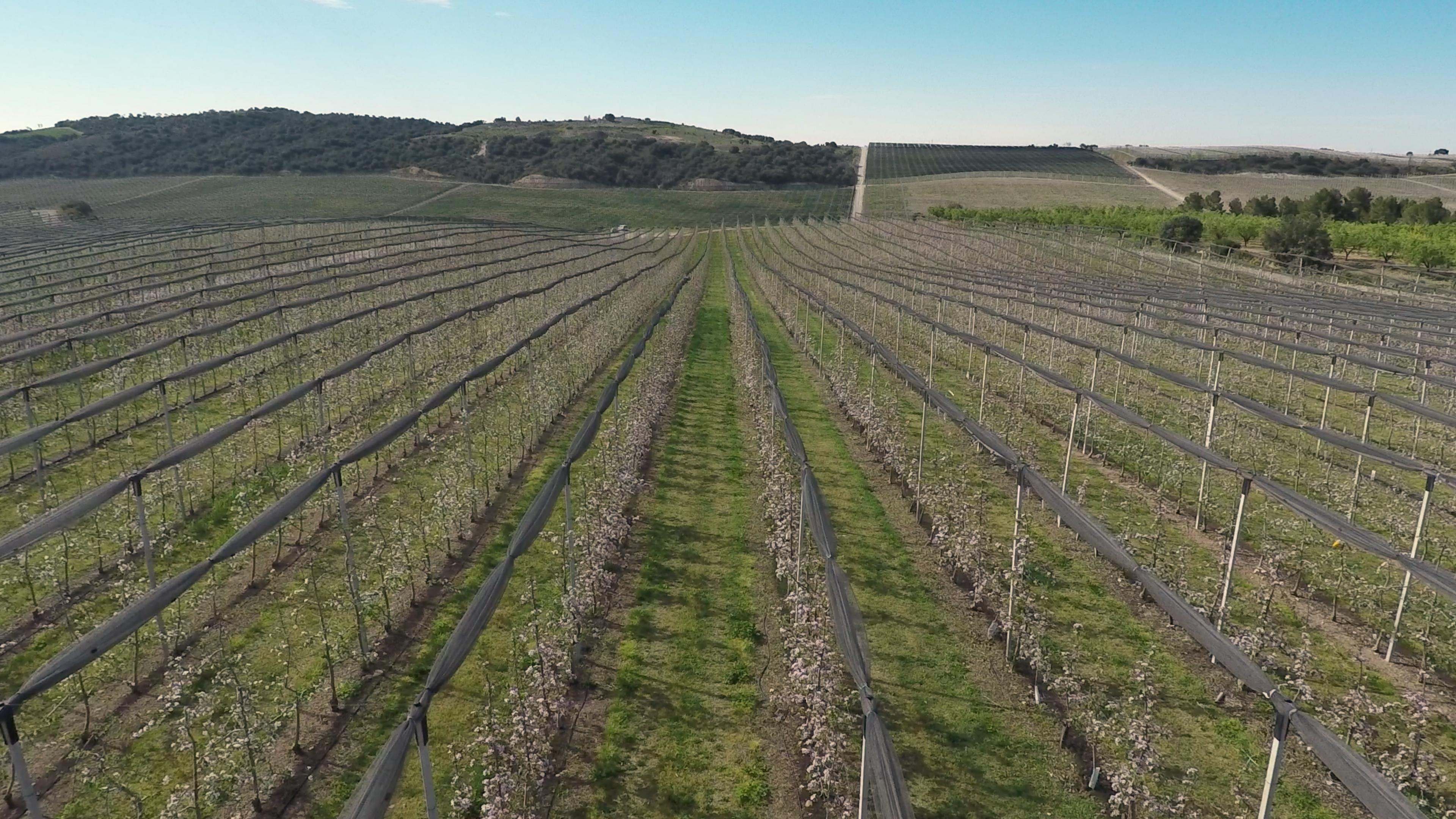 Agricultura inteligente con drones